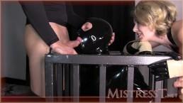 Cum Dumpster For Mistress T
